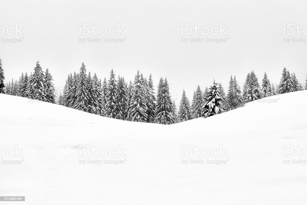 Paysage hivernal - Photo