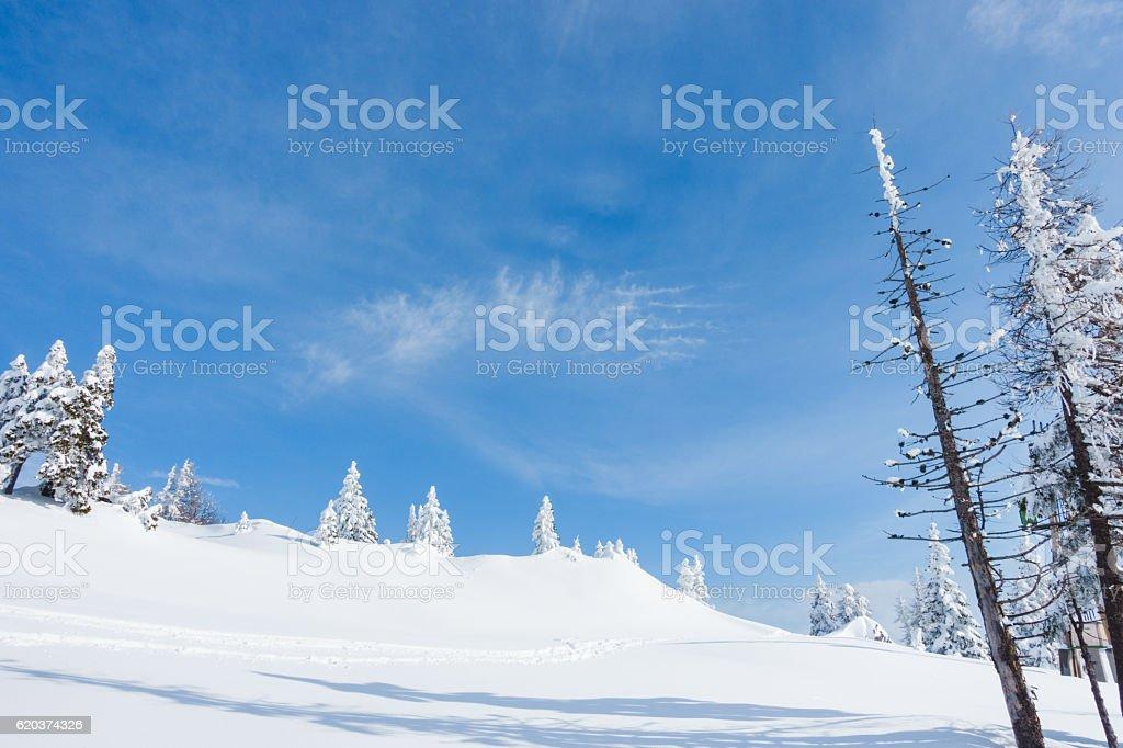 Zimowy krajobraz  zbiór zdjęć royalty-free
