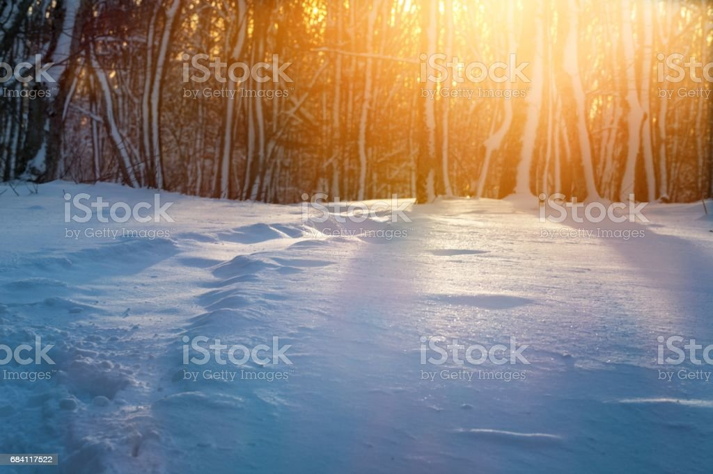 Winter landscape. royaltyfri bildbanksbilder