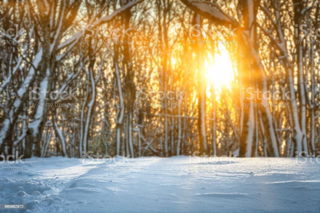 Winter landscape. ロイヤリティフリーストックフォト