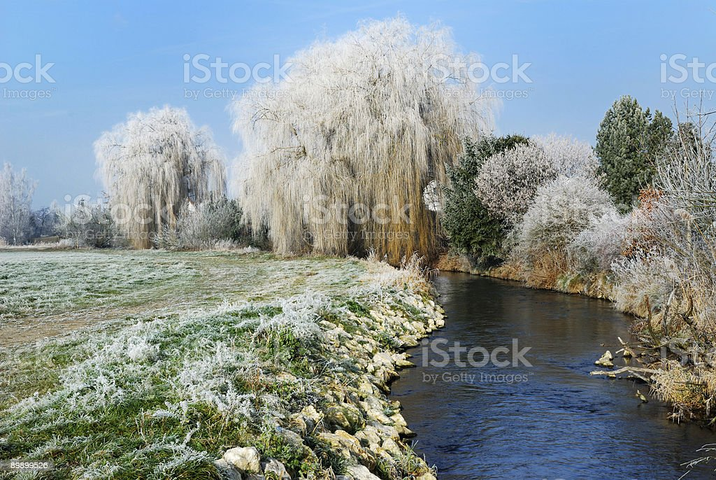 Winter landscape royalty free stockfoto