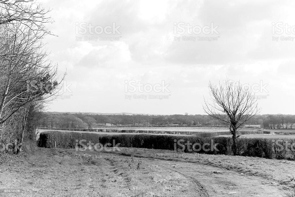 B&W Winter Landscape royalty-free stock photo
