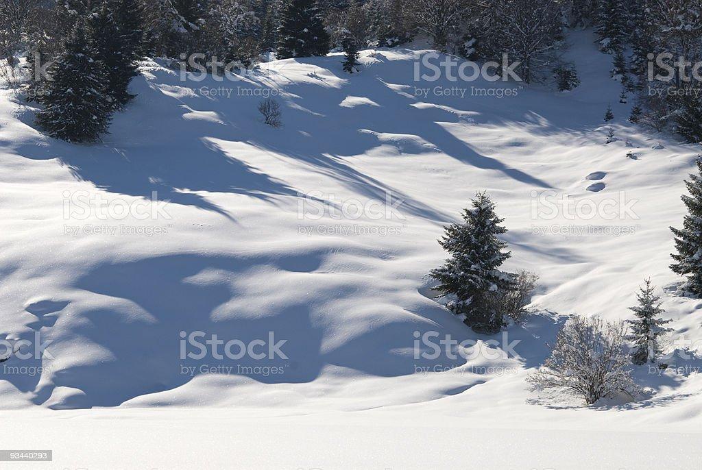 Winter-Landschaft Lizenzfreies stock-foto