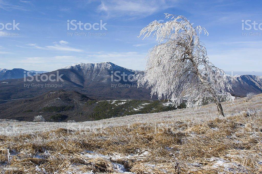 Paesaggio invernale. foto stock royalty-free