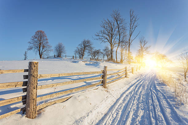 Winter landscape. road covered with snow stock photo