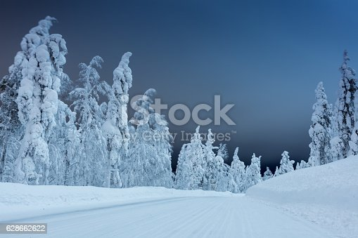 1066508460 istock photo Winter landscape - rural road at night with big trees 628662622