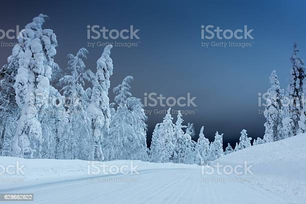 Photo of Winter landscape - rural road at night with big trees