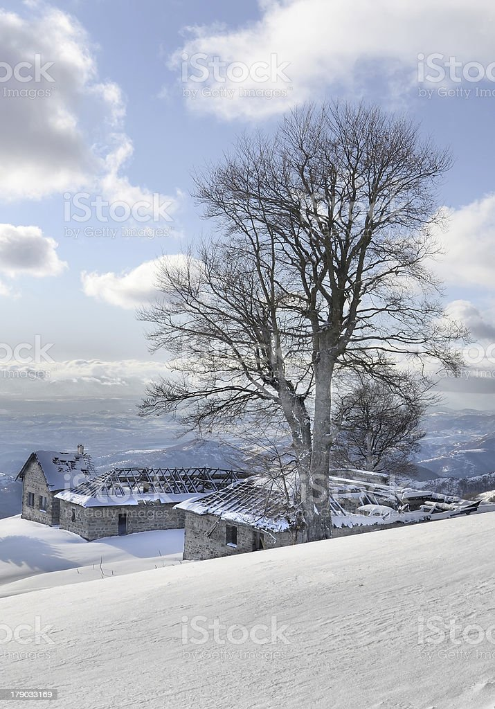 winter landscape snow background royalty-free stock photo