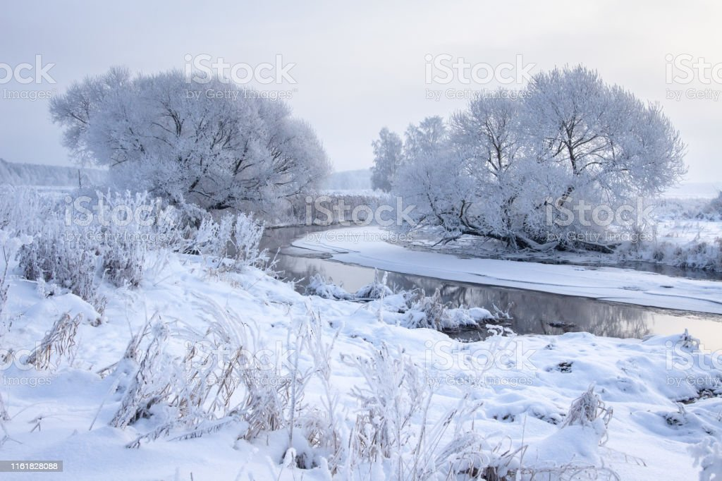 Winter landscape. Snowy trees on riverside. Cold frost weather....