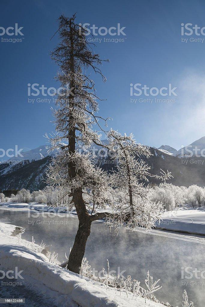 Winter landscape, St. Moritz, Switzerland royalty-free stock photo