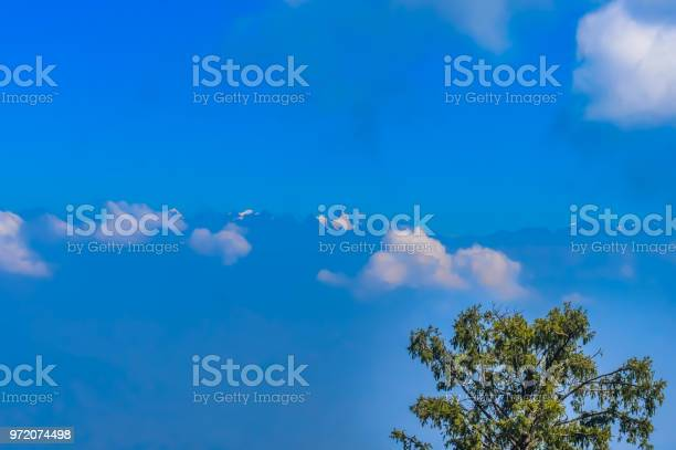 Photo of Winter landscape The branch of trees on the blue sky Angle view from below of tree branches covered in against white clouds in a blue sky during the winter season. nature with background concept