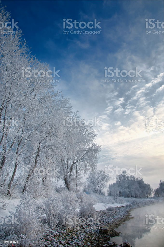 Winter landscape. Trees and bushes with hoarfrost. The water in stock photo