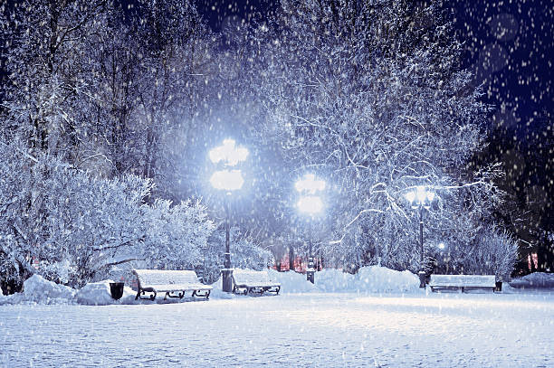 Winter landscape- winter evening in the night snowy park stock photo
