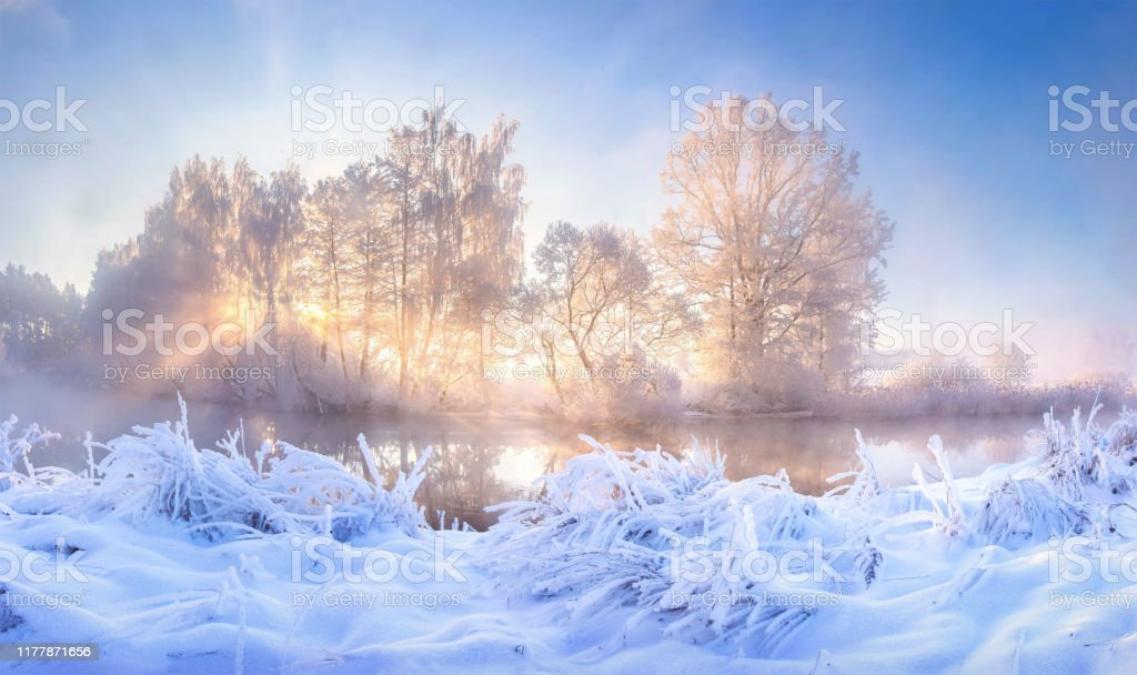 Winter Landscape Winter Frosty Nature In The Morning Sunlight