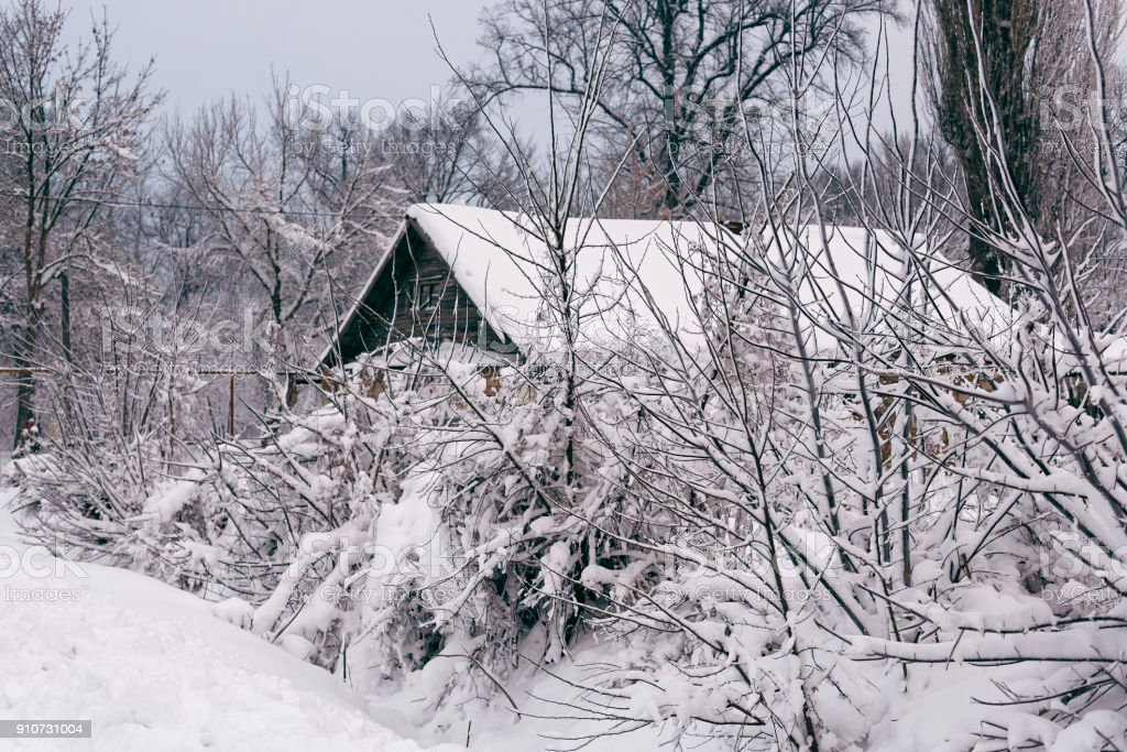 Winter Landscape With A House Stock Photo - Download Image ... on leaf house plant, ant house plant, steel house plant, lazarus house plant, banana house plant, marijuana house plant, lemon house plant, avocado house plant, jade house plant, sword house plant, dolphin house plant,