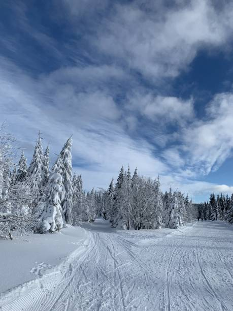 Cтоковое фото Winter landscape with a modified cross-country ski trails in Krkonose mountains, Czech Republic.
