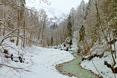 Photo taken in Germany near the town of Garmisch-Partenkirchen. The photo shows a winter landscape with a river flowing through a mountain valley on a cloudy day.
