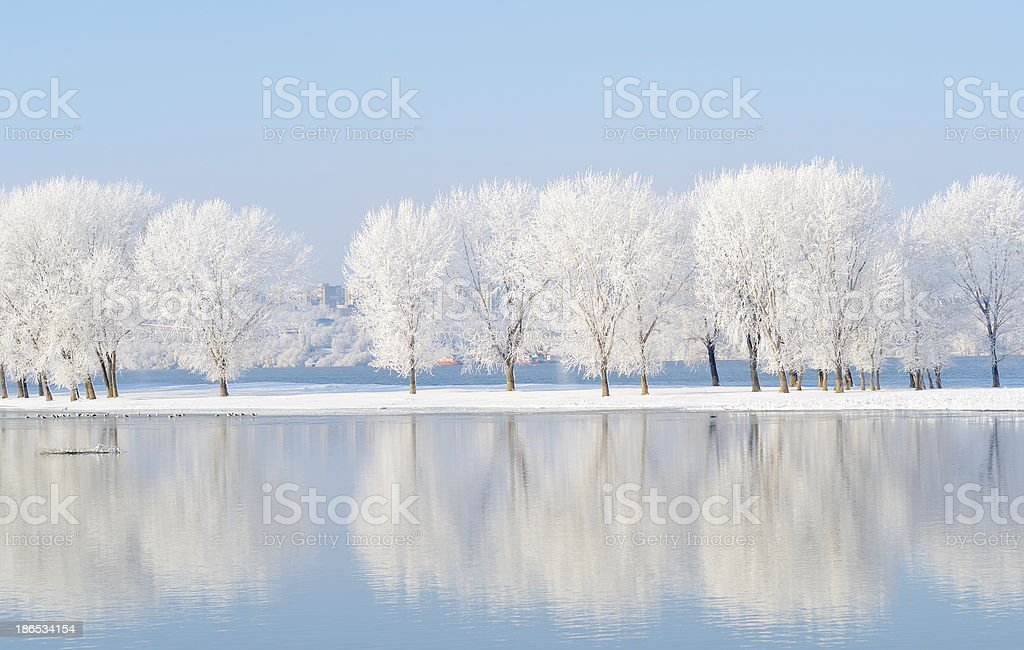 winter landscape with beautiful reflection in the water stock photo
