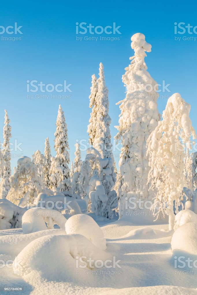 Winter landscape with clear blue sky stock photo