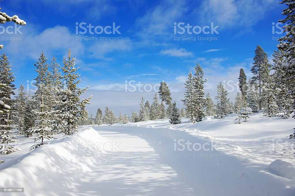 Winter landscape with country road stock photo