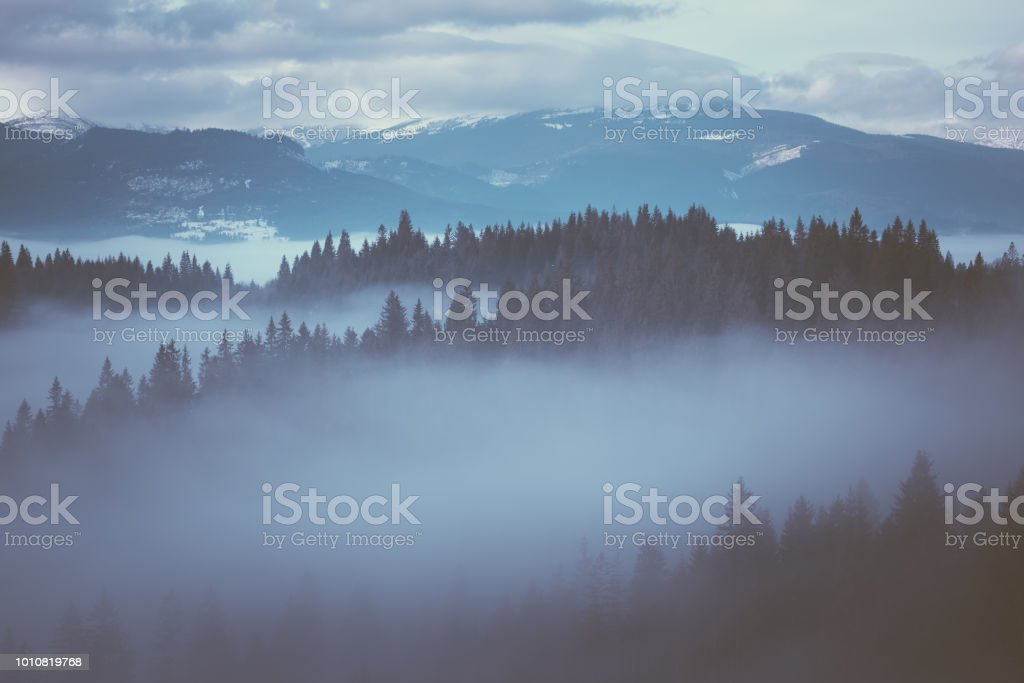 Winter landscape with fog stock photo