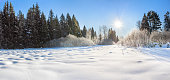 beautiful winter landscape with forest, snow, blue sky and sun