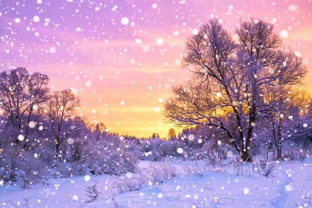 winterliche landschaft mit wald, bäume und sunrise - schneeflocke sonnenaufgang stock-fotos und bilder