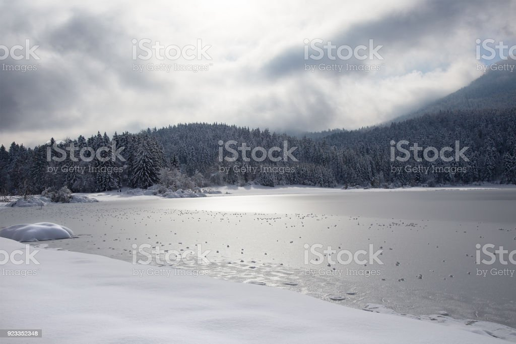 Winter landscape with frozen lake, snowball and snowy spruce trees, Cerknica lake, Slovenia stock photo