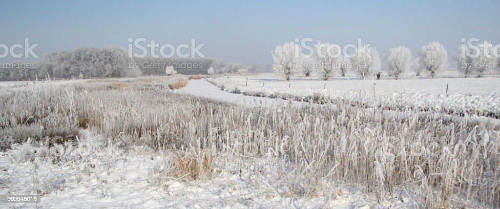 Winter landscape with frozen stream and white snow covered trees - Royalty-free Backgrounds Stock Photo