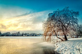Winter landscape with hoarfrost covered tree and colorful sunset on a frozen lake