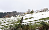Ancares Region, Lugo Province, Galicia, Spain. Stone house on a mountainside with snow, trees, cows and mist.