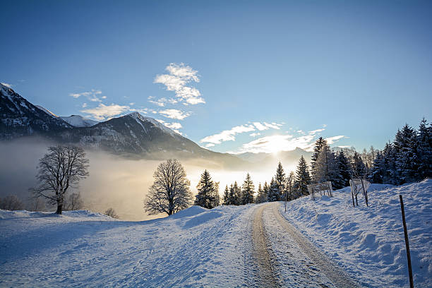 winter landscape with icy road near salzburg in austria, europe - 스티리아 뉴스 사진 이미지