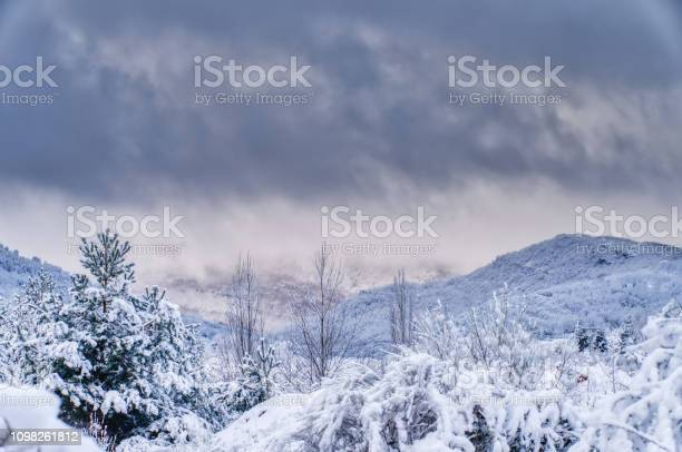 Photo of Winter landscape with mountains and background with fog