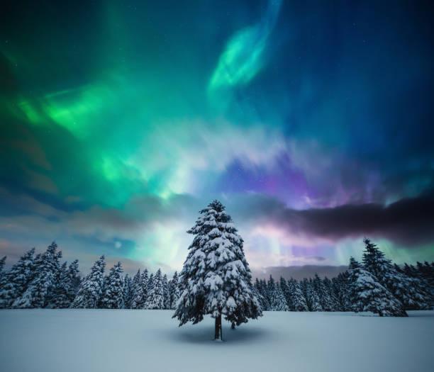 vinterlandskap med norrsken - northern lights bildbanksfoton och bilder