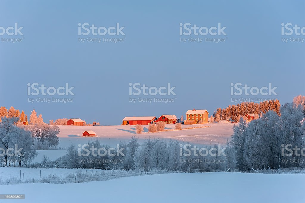 Winter landscape with red farm-houses, northern Sweden. stock photo
