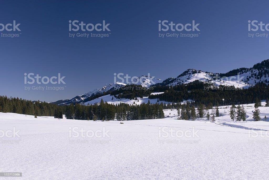 Winter Landscape with Ski Run stock photo