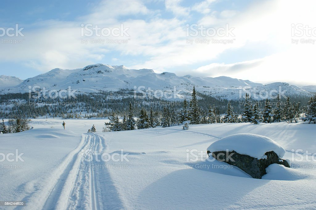 Winter landscape with ski tracks stock photo