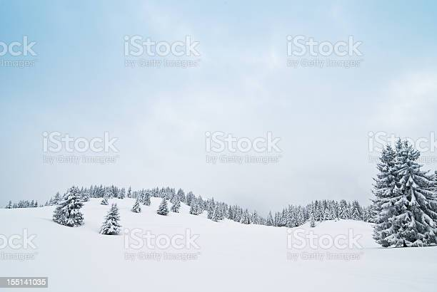 Winter landscape with snow and coniferous trees picture id155141035?b=1&k=6&m=155141035&s=612x612&h=j mjz7tqjsnmtamcpmxs8dujalaydraxjj nybazt88=