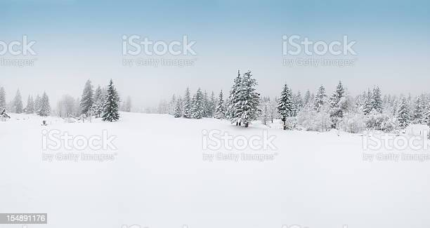 Winter landscape with snow and trees picture id154891176?b=1&k=6&m=154891176&s=612x612&h=qklmx4zq9zdoj2 tpf9ftufugkrn5zwqvw6wfidt47k=