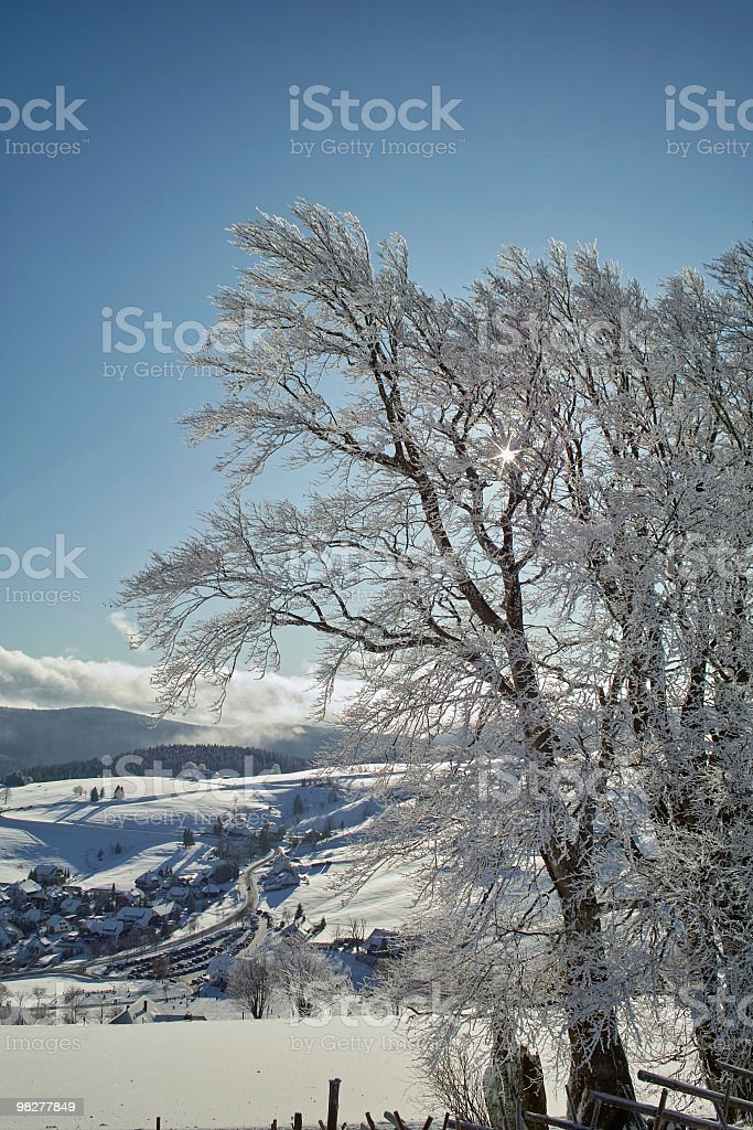 winter landscape with snow covered trees in Black Forest royalty-free stock photo