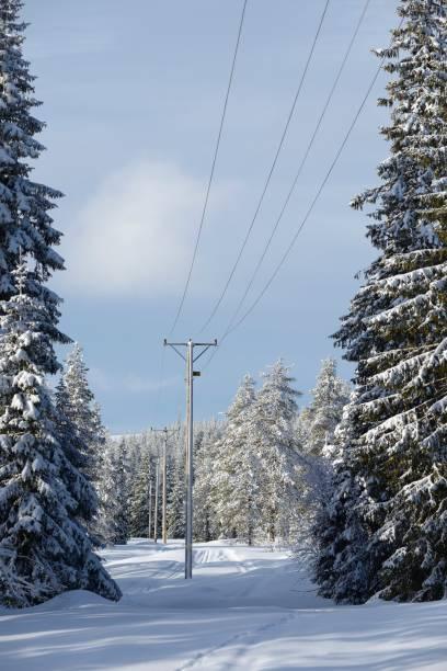 Winterlandschaft mit Schnee bedeckt Bäume  – Foto