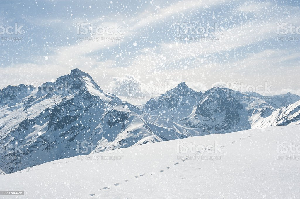 Winter landscape with snowflakes stock photo