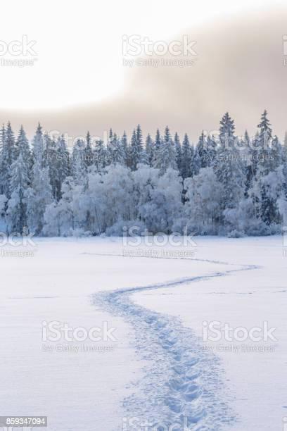 Winter landscape with trails in the new snow picture id859347094?b=1&k=6&m=859347094&s=612x612&h=tnecx0efrzy zcqsl4xj5baagie7fbsn8ys2n4kdvrq=