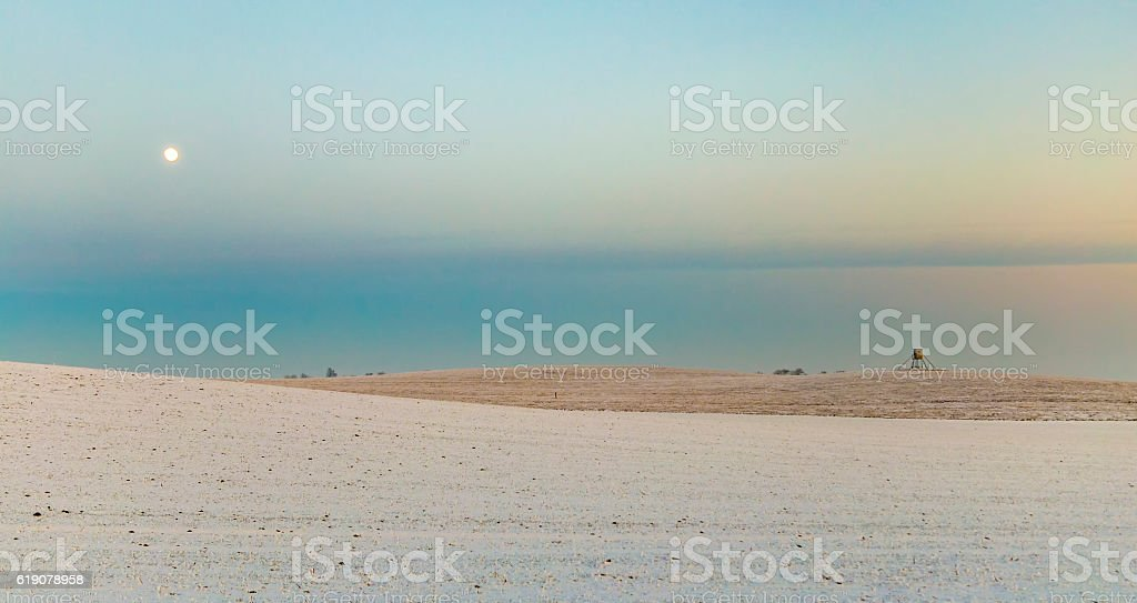 winter landscape with tree alley  in sunset stock photo