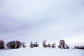 A winter landscape with trees and high snow in Bavaria