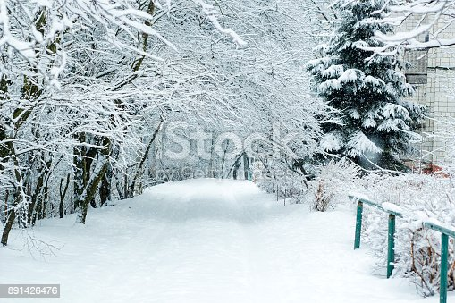 1061644120 istock photo Winter landscape with trees covered with snow and road between trees in beautiful winter day 891426476