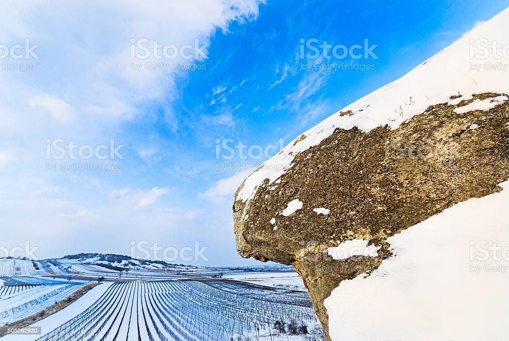 Winter landscape with vineyard and rocks in Oggau