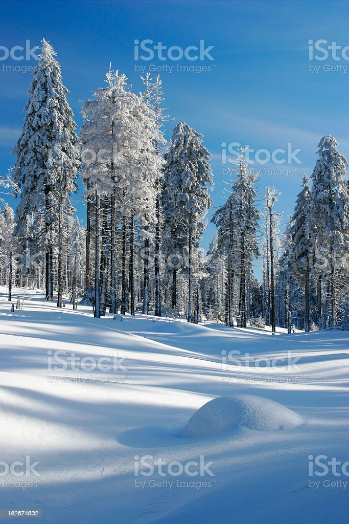 Winter Landscape XI royalty-free stock photo
