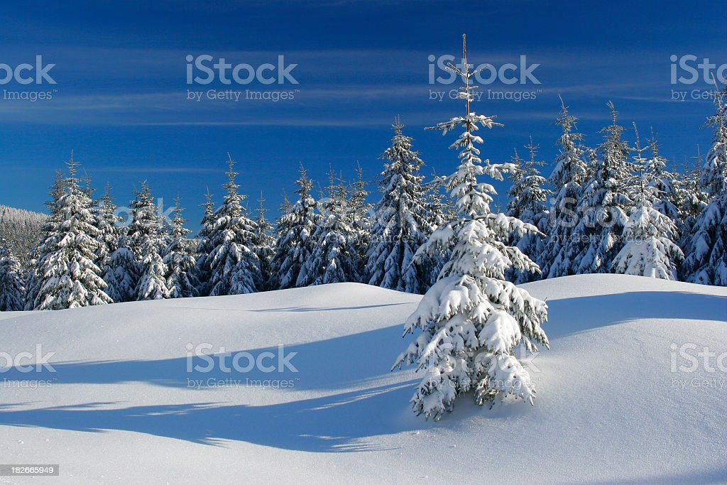 Winter Landscape XIII royalty-free stock photo