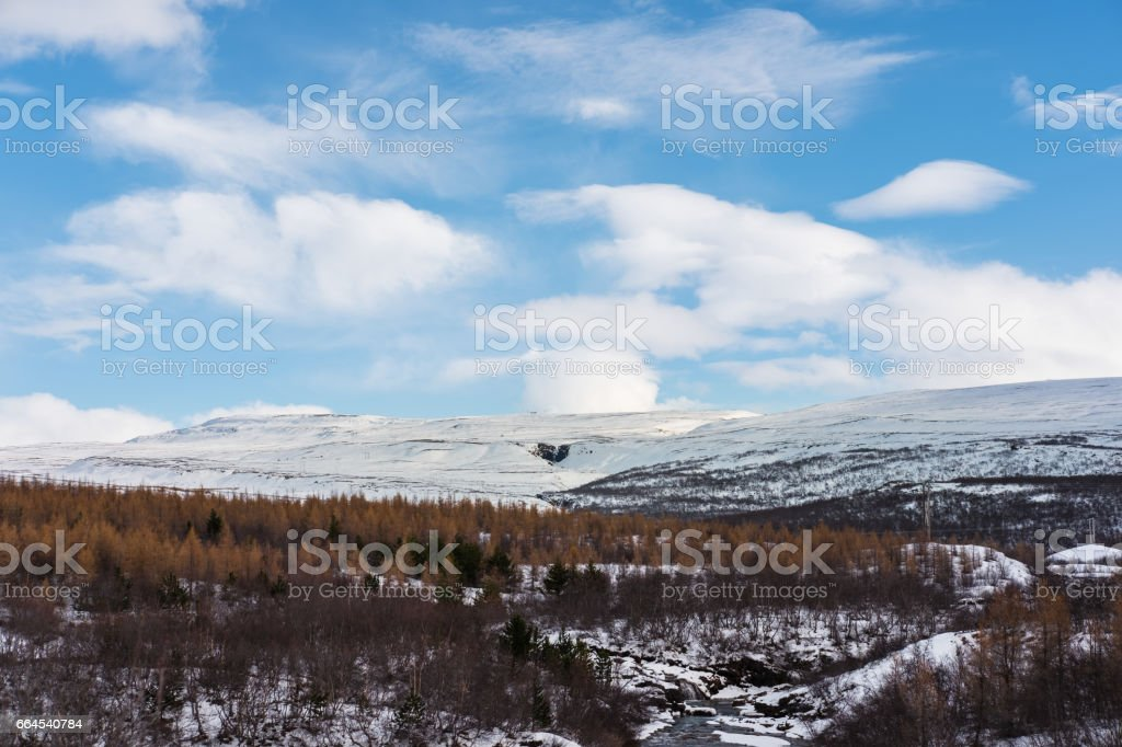 winter landscaped, with forest and mountain in winter royalty-free stock photo